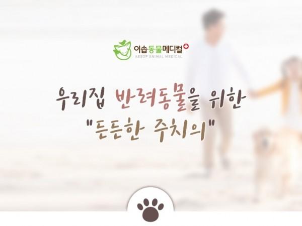 진주고양이병원_(2).jpg